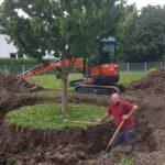 Baumumpflanzung Schorndorf